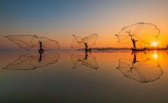 Fondos: Inversores que unen fuerzas para poner fin a la crisis humanitaria en el mar   Autor del artículo: Finanzas.com