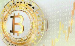 Divisas: Bitcoin. Del frenesí del 'halving' a las predicciones de precios disparatadas   Autor del artículo: José Jiménez