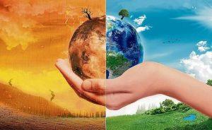 Contenido asociado: El packaging sostenible se convierte en sector refugio para los inversores verdes   Autor del artículo: Daniel Domínguez