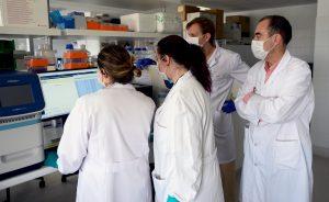Empresas: La OMS dice que hay 70 vacunas contra el coronavirus en desarrollo | Autor del artículo: Finanzas.com