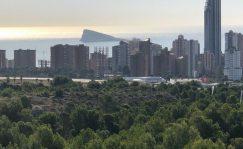 Inmobiliario: ¿Es 2021 un buen año para invertir en inmuebles? | Autor del artículo: Cristina Casillas