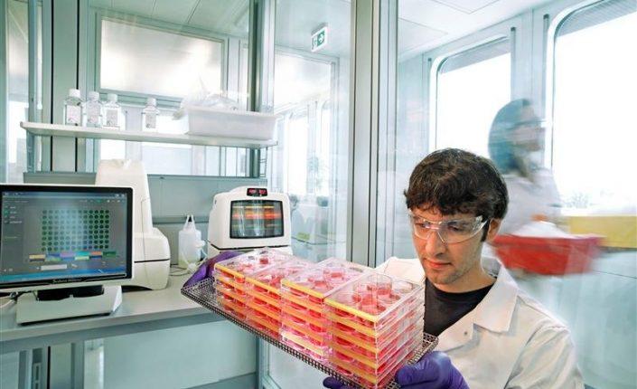 Empresas: Bayer y Merck confirman su recuperación más allá del Covid-19 | Autor del artículo: Daniel Domínguez
