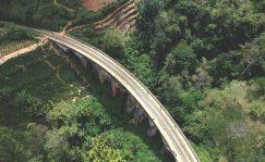 Las infraestructuras verdes, clave para el mundo post Covid.